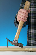 Claw Posters - Claw Hammer And Nail Poster by Photo Researchers