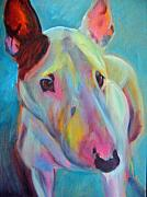 English Bull Terrier Framed Prints - Clem Framed Print by Kaytee Esser