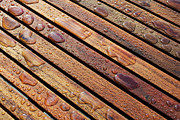 Outdoor Chair Posters - Close-up Of Wet Patio Furniture, Vancouver, British Columbia, Canada Poster by Ron Fehling