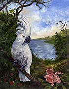 Anne Kushnick - Cockatoo and Orchid