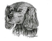 Jim Hubbard Prints - Cocker Spaniel Print by Jim Hubbard