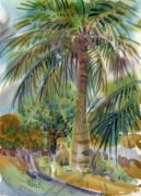 Tropic Paintings - Coconut Palm by Donald Maier