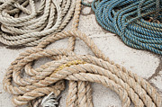 Frayed Framed Prints - Coiled Ropes Framed Print by Shannon Fagan