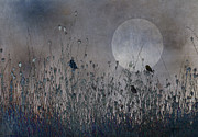 Sparrow Prints - Cold Moon Rising Print by Ron Jones