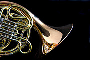 Perform Art - Color French horn by M K  Miller