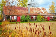 Red Doors Prints - Colorful Barn ... Print by Juergen Weiss