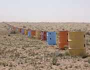 Scrub Brush Framed Prints - Colorful Row of Barrels in the Desert Framed Print by Paul Edmondson