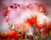 Blossom Originals - Colorful tulips by Anek Suwannaphoom