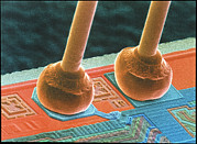 Integrated Framed Prints - Coloured Sem Of Integrated Circuit Micro-wires. Framed Print by Power And Syred