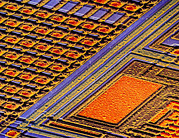 Integrated Prints - Coloured Sem Of Surface Of An Eprom Silicon Chip Print by Dr Jeremy Burgess