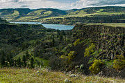 Photogaph Art - Columbia River Gorge One by Josh Whalen