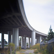 Asphalt Photos - Columns Supporting Freeway Overpass by Eddy Joaquim