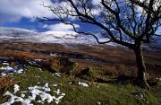 Snow-covered Landscape Art - Comeragh Mountains, County Waterford by Richard Cummins