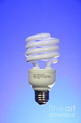 Efficiency Posters - Compact Fluorescent Light Bulb Poster by Photo Researchers, Inc.
