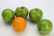 Comparison Framed Prints - Comparing Apples And Oranges Framed Print by Photo Researchers, Inc.