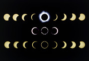 Solar Eclipse Framed Prints - Composite Time-lapse Images Of Solar Eclipses Framed Print by Dr Fred Espenak
