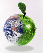 Abstract Earth Posters - Computer Artwork Of Half Earth And Half Apple Poster by Victor Habbick Visions