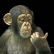 Chimpanzee Digital Art Prints - Contemplation Print by Larry Linton