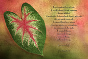 Biblical Photo Prints - 1 Corinthians 13 LOVE Print by Bonnie Barry