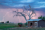 Striking Images Framed Prints - Country Horses Lightning Storm NE Boulder County CO  76 Framed Print by James Bo Insogna