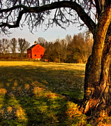 Farming Barns Posters - Country Life Poster by Susan Candelario