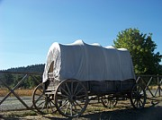 Conestoga Wagon Photos - Covered Wagon by Charles Robinson