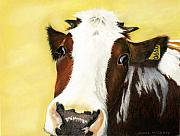 Farm Animals Pastels Prints - Cow No. 0650 Print by Carol McCarty