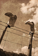 Old West Photo Originals - Cowboy Boots by Paul Huchton