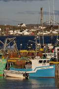 Fishing Industry Framed Prints - Crab Fishing Boats, Joe Batts Arm, Fogo Framed Print by John Sylvester