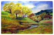 Creek Drawings Acrylic Prints - Crane Creek California Acrylic Print by Siona Koubek