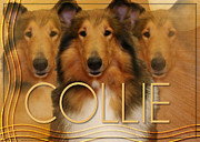 Collie Digital Art Posters - Crescent Moon - Collie Poster by Renae Frankz