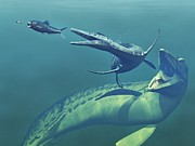 Marine Biology Prints - Cretaceous Marine Predators, Artwork Print by Walter Myers