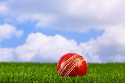 Cricket Art - Cricket ball on grass by Richard Thomas