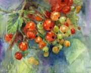 Svetlana Novikova Digital Art Posters - Currants berries painting Poster by Svetlana Novikova