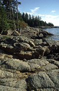 Deer Isle Shoreline Print by Thomas R Fletcher