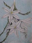 Floral Tapestries - Textiles - Desert Lillie by David Kelly