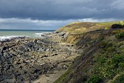 Slates Prints - Devonian Slate Coastline Print by Dr Keith Wheeler