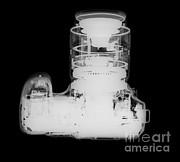 Ted Kinsman - Digital Camera X-ray