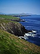 Dingle Peninsula Posters - Dingle Coastline near Fahan Ireland Poster by Teresa Mucha