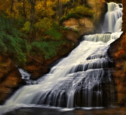 Streams Art - Dingmans Falls by Susan Candelario