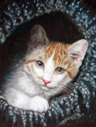 Cat Portraits Pastels Prints - Discovery Print by Beverly Fuqua