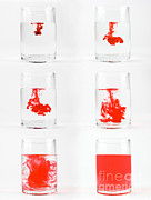 Liquid Prints - Dissolving Dye Print by Photo Researchers, Inc.