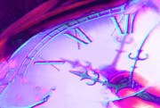 Clock Hands Digital Art Prints - Distorted Time Print by Mike McGlothlen