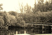 Streetscenes Photos - DOCK ON THE RIVER in SEPIA by Rob Hans