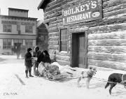 Klondike Gold Rush Posters - Dog Sled Poster by Granger