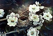 Birdnest Framed Prints - Dogwood with Bird nest Framed Print by Lynne Parker