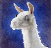 Lama Painting Framed Prints - Dolly LLama... Framed Print by Will Bullas