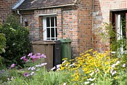 Cartons Framed Prints - Domestic Waste Collection Bins Framed Print by Sheila Terry