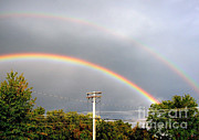 Meteorological Posters - Double Rainbow Poster by Science Source
