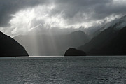 Doubtful Framed Prints - Doubtful Sound Framed Print by Mollie Jax